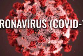 ارشادات لمكافحة فيروس كورونا من الصحة الدولية